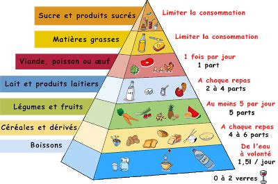 À table!: Vocabulaire: Pyramides alimentaires