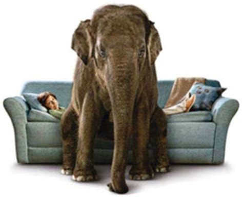Good night -- Seen the COPD commercial with an elephant?