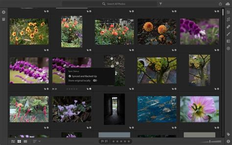 Lightroom CC vs Lightroom Classic: 13 things you need to