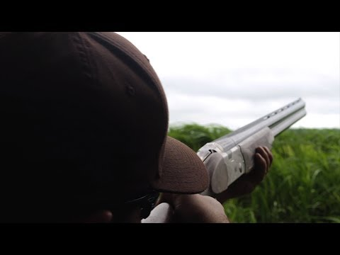 Beretta 686 Silver Pigeon 20 gauge Shotgun | New Guns for